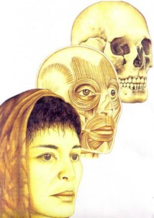 Homo erectus 1995 by joe damato - 3 part 4
